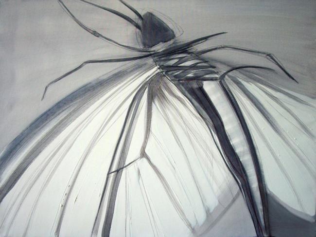 Dita Luse - Nightfly's dance