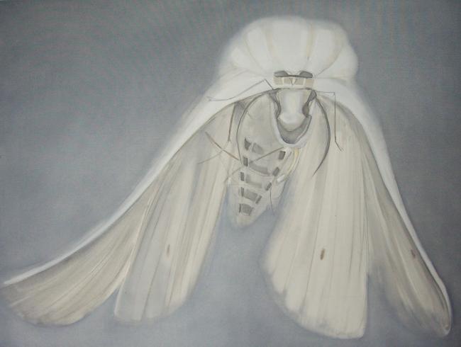 Dita Luse - Bride